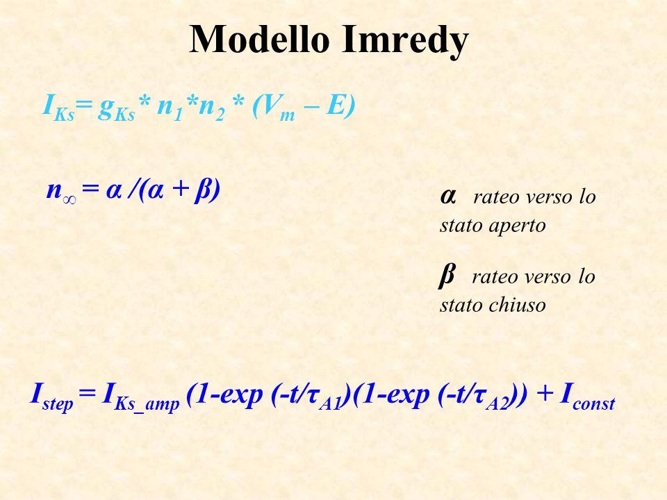Modello Imredy I Ks = g Ks * n 1 *n 2 * (V m – E) I step = I Ks_amp (1-exp (-t/τ A1 )(1-exp (-t/τ A2 )) + I const n = α /(α + β) α rateo verso lo stat