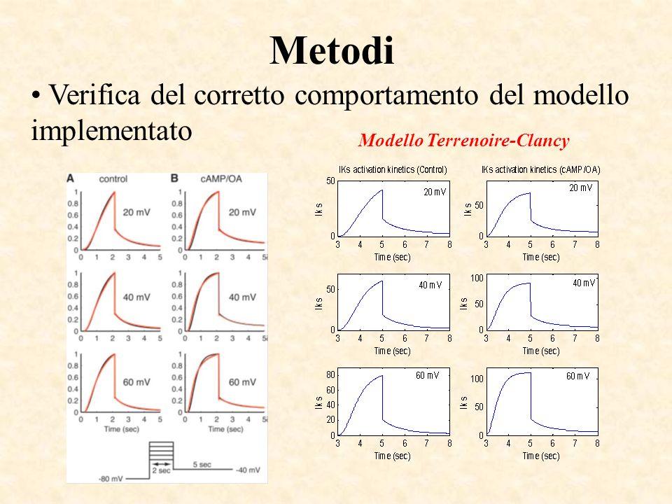 Metodi Verifica del corretto comportamento del modello implementato Modello Terrenoire-Clancy