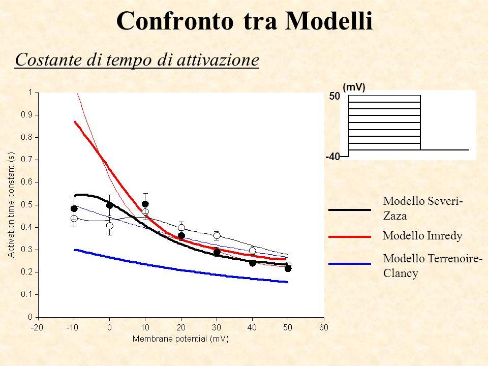 Confronto tra Modelli Costante di tempo di attivazione Modello Severi- Zaza Modello Imredy Modello Terrenoire- Clancy