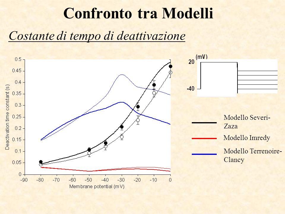 Confronto tra Modelli Costante di tempo di deattivazione Modello Severi- Zaza Modello Imredy Modello Terrenoire- Clancy