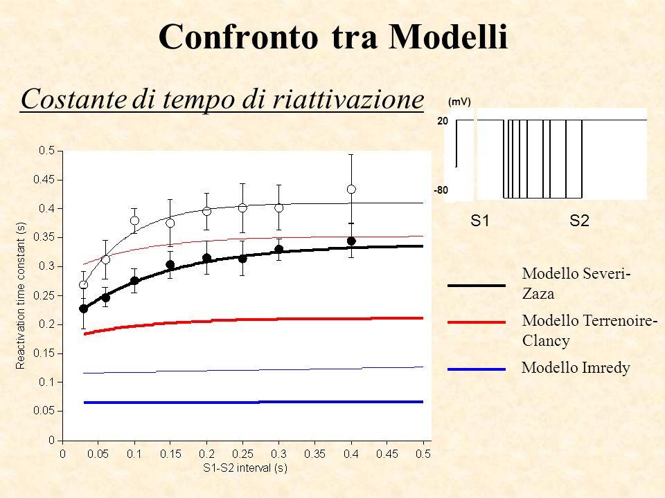 Confronto tra Modelli Costante di tempo di riattivazione 20 -80 (mV) S1S2 Modello Terrenoire- Clancy Modello Severi- Zaza Modello Imredy