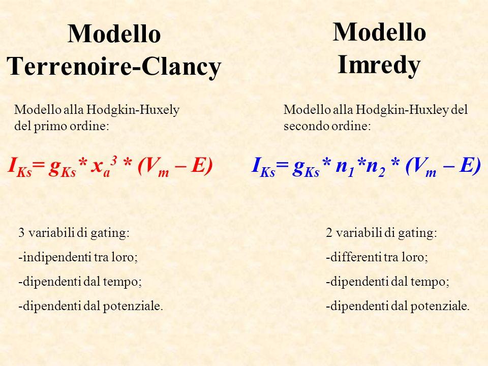 Modello Terrenoire-Clancy 3 variabili di gating: -indipendenti tra loro; -dipendenti dal tempo; -dipendenti dal potenziale. I Ks = g Ks * x a 3 * (V m