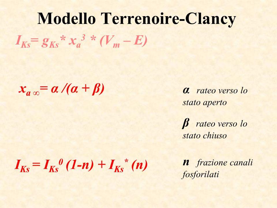 Modello Terrenoire-Clancy I Ks = g Ks * x a 3 * (V m – E) I Ks = I Ks 0 (1-n) + I Ks * (n) x a = α /(α + β) α rateo verso lo stato aperto β rateo vers