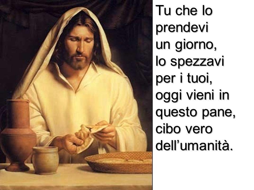 Tu che lo prendevi un giorno, lo spezzavi per i tuoi, oggi vieni in questo pane, cibo vero dellumanità.