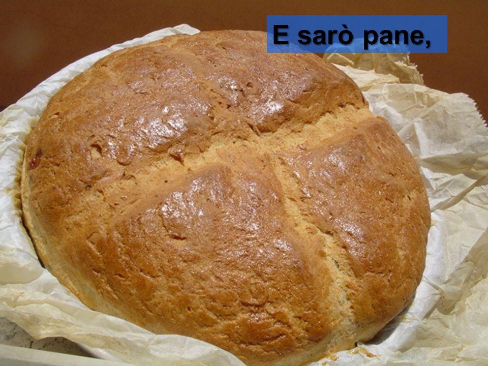 E sarò pane,