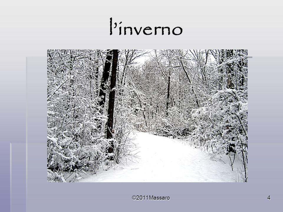 ©2011Massaro45 Nevica