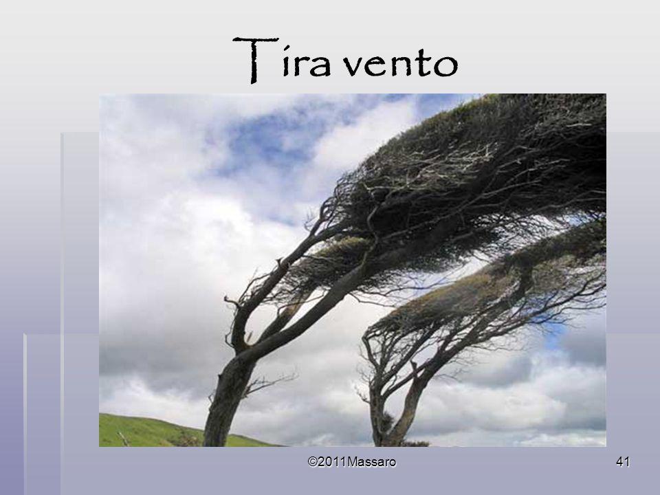 ©2011Massaro41 Tira vento