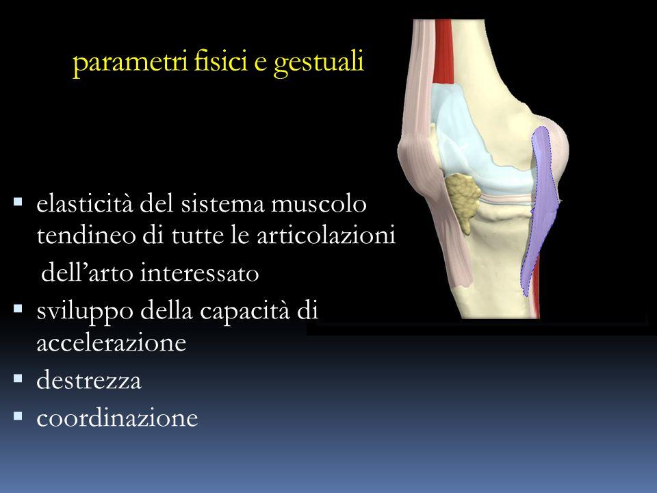 parametri fisici e gestuali elasticità del sistema muscolo tendineo di tutte le articolazioni dellarto interes sato sviluppo della capacità di acceler