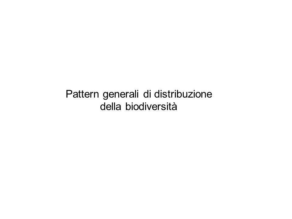 Pattern generali di distribuzione della biodiversità Gradienti latitudinali Gradienti altitudinali