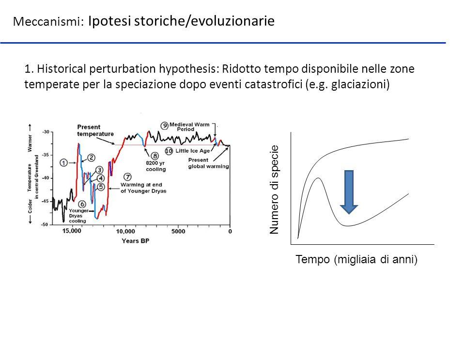 Meccanismi: Ipotesi storiche/evoluzionarie 1. Historical perturbation hypothesis: Ridotto tempo disponibile nelle zone temperate per la speciazione do