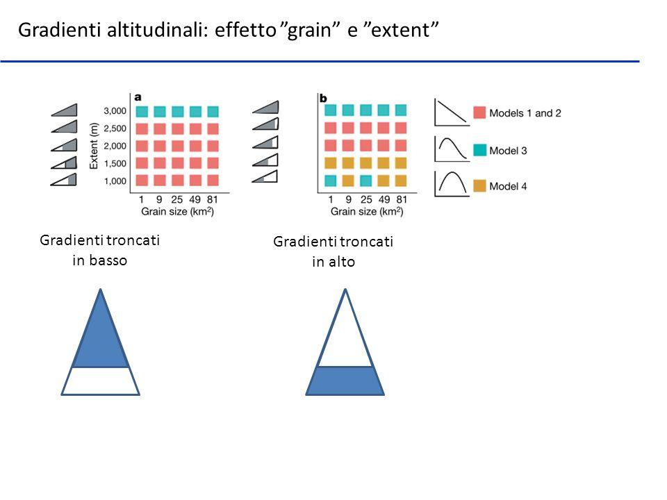 Gradienti troncati in basso Gradienti troncati in alto Gradienti altitudinali: effetto grain e extent