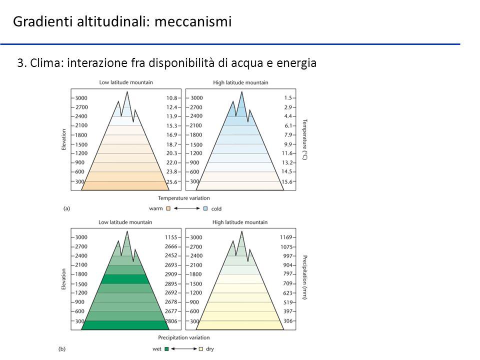 3. Clima: interazione fra disponibilità di acqua e energia Gradienti altitudinali: meccanismi