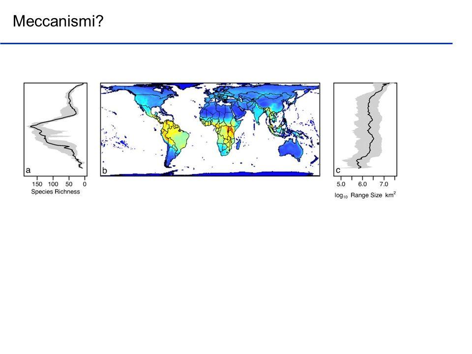 Simile pattern di temperatura ma si riduce leffetto di differenze biogeografiche o storiche