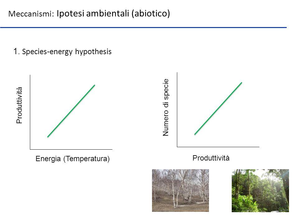 Meccanismi: Ipotesi ambientali (abiotico) 1. Species-energy hypothesis Energia (Temperatura) Produttività Numero di specie Produttività