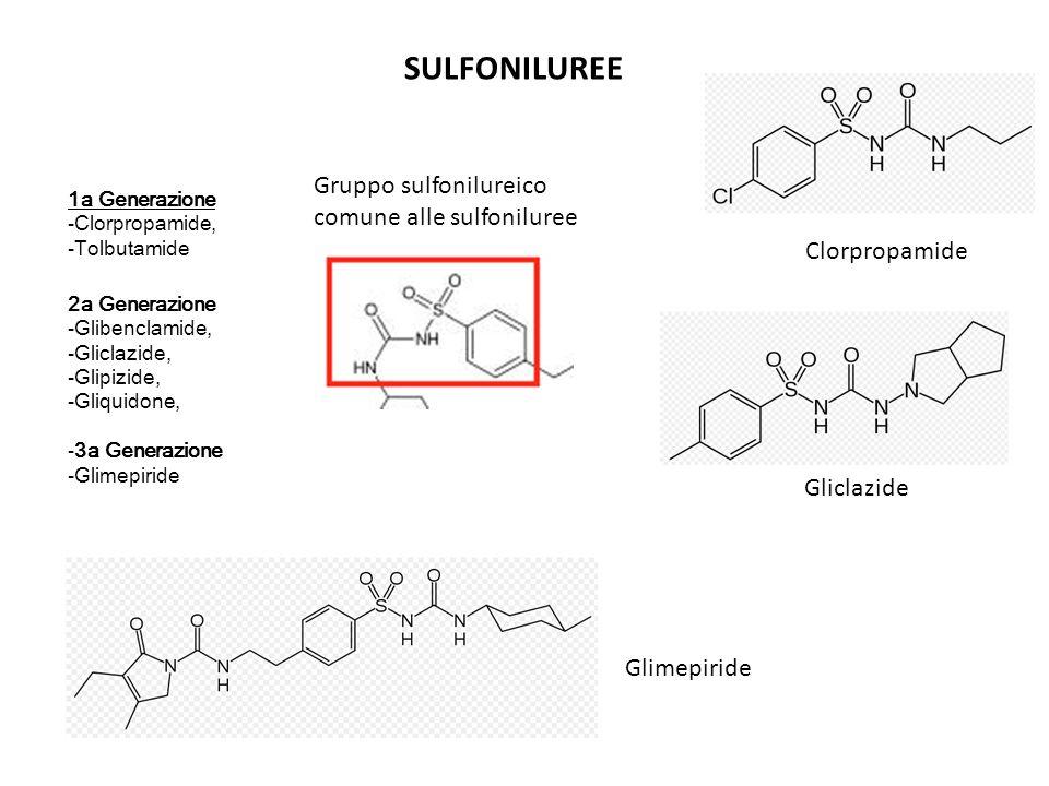 SULFONILUREE 1a Generazione -Clorpropamide, -Tolbutamide 2a Generazione -Glibenclamide, -Gliclazide, -Glipizide, -Gliquidone, -3a Generazione -Glimepi