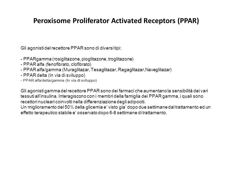 Gli agonisti del recettore PPAR sono di diversi tipi: - PPARgamma (rosiglitazone, pioglitazone, troglitazone) - PPAR alfa (fenofibrato, clofibrato) -