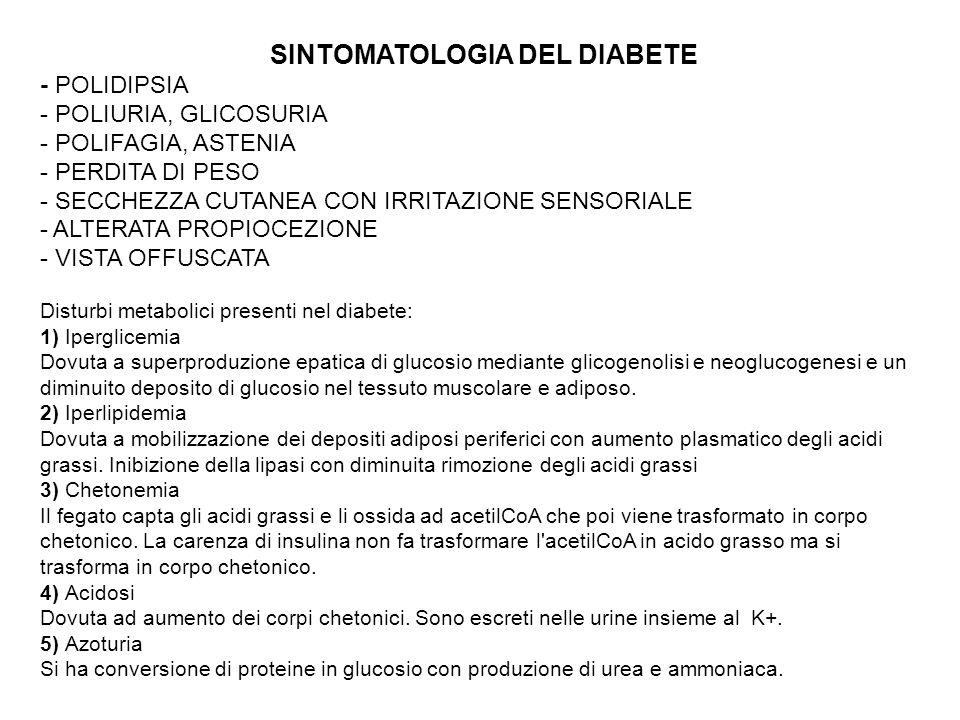 SINTOMATOLOGIA DEL DIABETE - POLIDIPSIA - POLIURIA, GLICOSURIA - POLIFAGIA, ASTENIA - PERDITA DI PESO - SECCHEZZA CUTANEA CON IRRITAZIONE SENSORIALE -