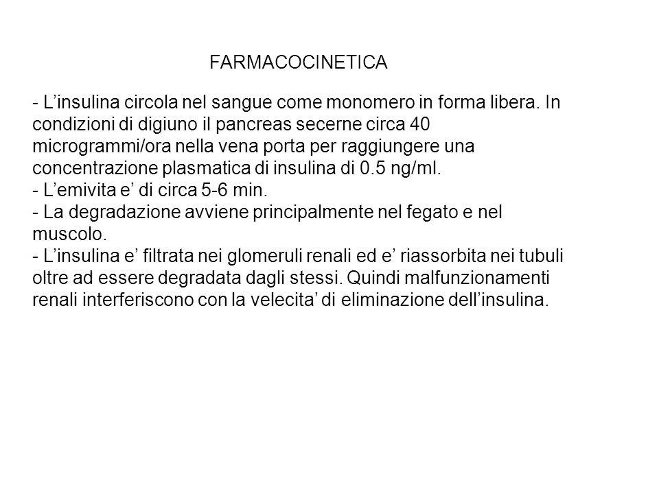 FARMACOCINETICA - Linsulina circola nel sangue come monomero in forma libera. In condizioni di digiuno il pancreas secerne circa 40 microgrammi/ora ne