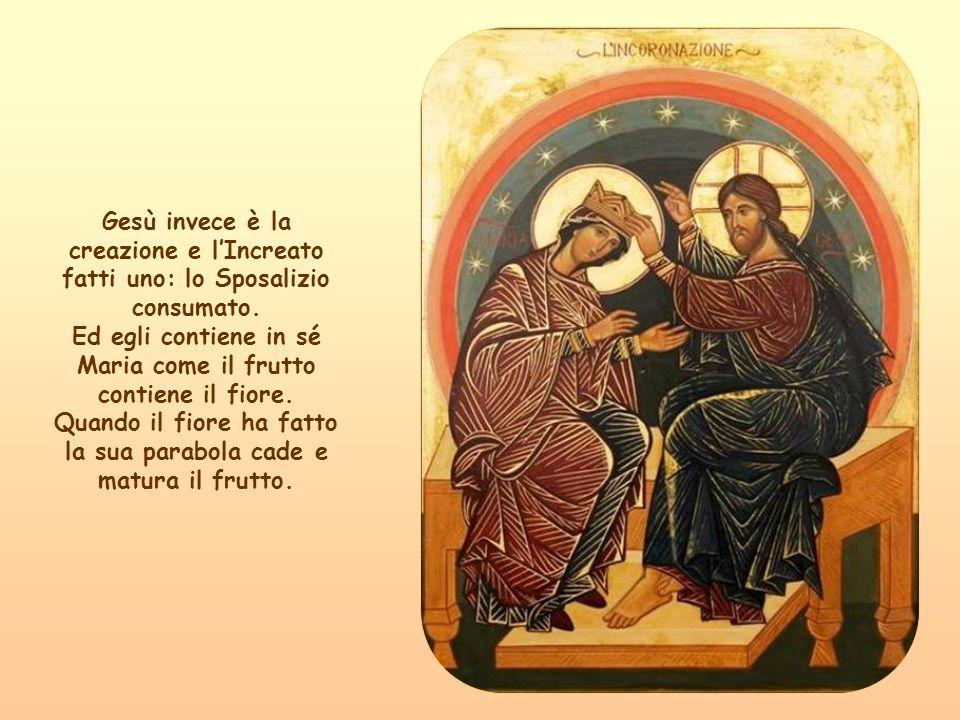 Abbiamo dunque un solo fiore: Maria. Ed un solo frutto: Gesù.