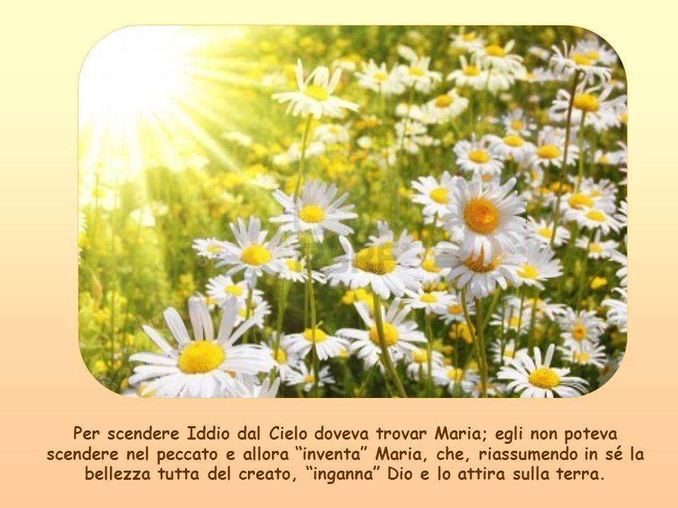 Dal Cielo Dio sinnamora di questo Fiore dei fiori, limpollina di Spirito Santo e Maria dà al Cielo e alla terra il Frutto dei frutti: G GG Gesù.