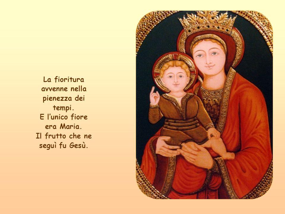 LAntico e il Nuovo Testamento formano un solo albero.