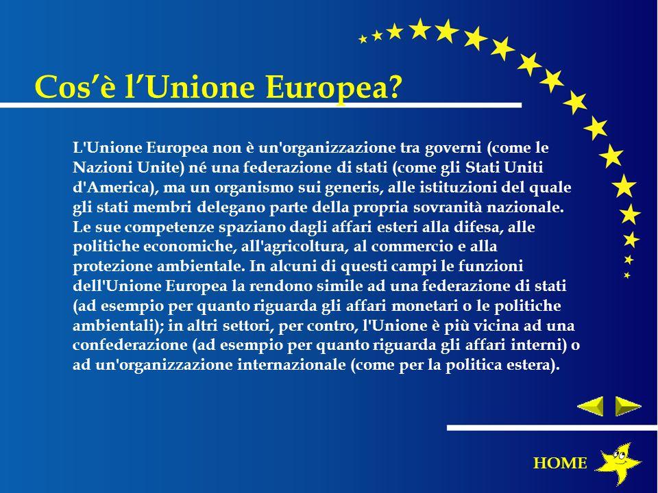 L'Unione Europea non è un'organizzazione tra governi (come le Nazioni Unite) né una federazione di stati (come gli Stati Uniti d'America), ma un organ