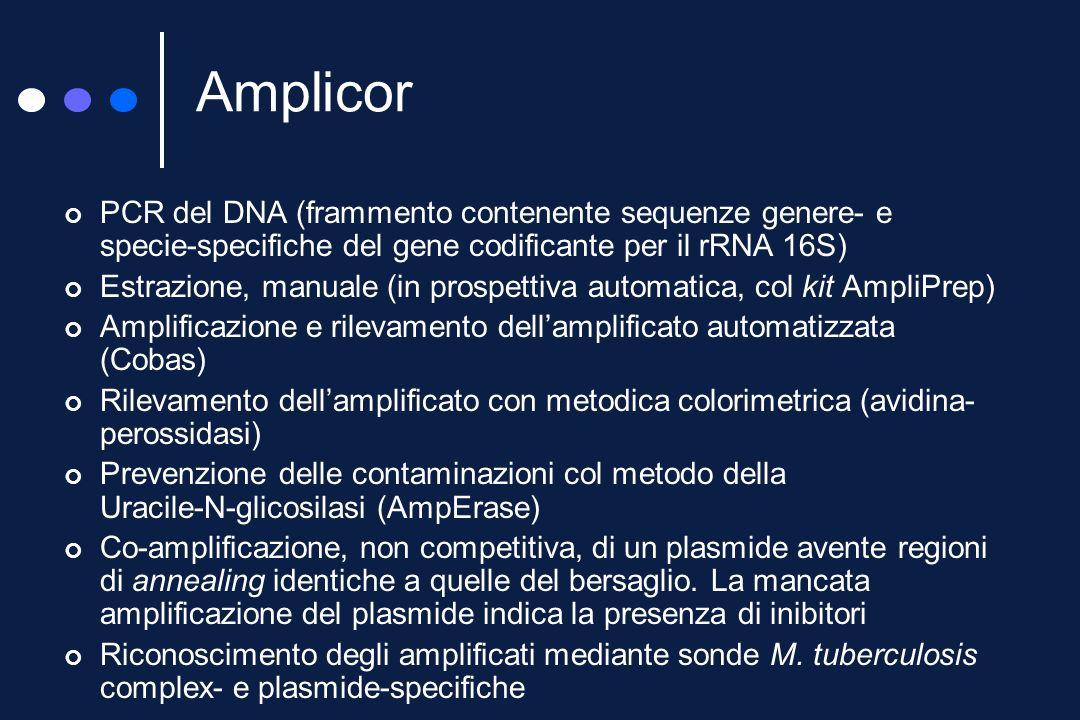 I kit commerciali Amplicor (Roche) Amplified M. tuberculosis direct test (Gen-Probe) BDProbeTec ET (Becton Dickinson) RealArt M. tuberculosis (Abbott)