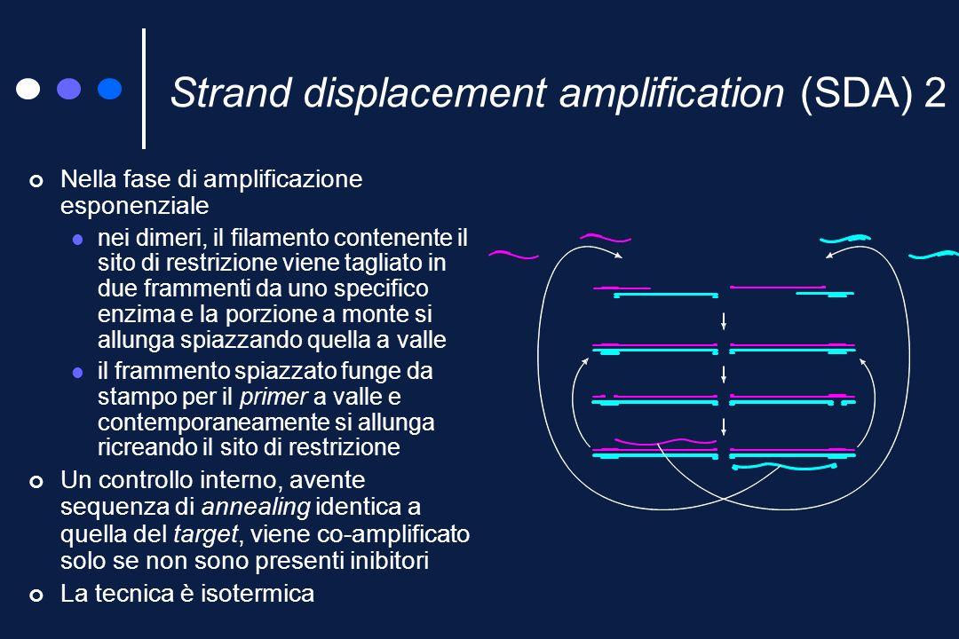 Strand displacement amplification (SDA) 1 Nella fase di produzione del target un primer ed un bamper, complementari di sequenze bersaglio molto vicine, si legano ad un filamento di DNA denaturato, il primer contiene un sito di restrizione in presenza di DNA-polimerasi primer e bamper si allungano e questultimo spiazza il primer i filamenti spiazzati si uniscono ad altri primer e bamper dando luogo ad ulteriore allungamento-spiazzamento bamper sito di restrizione 5 3 target primer