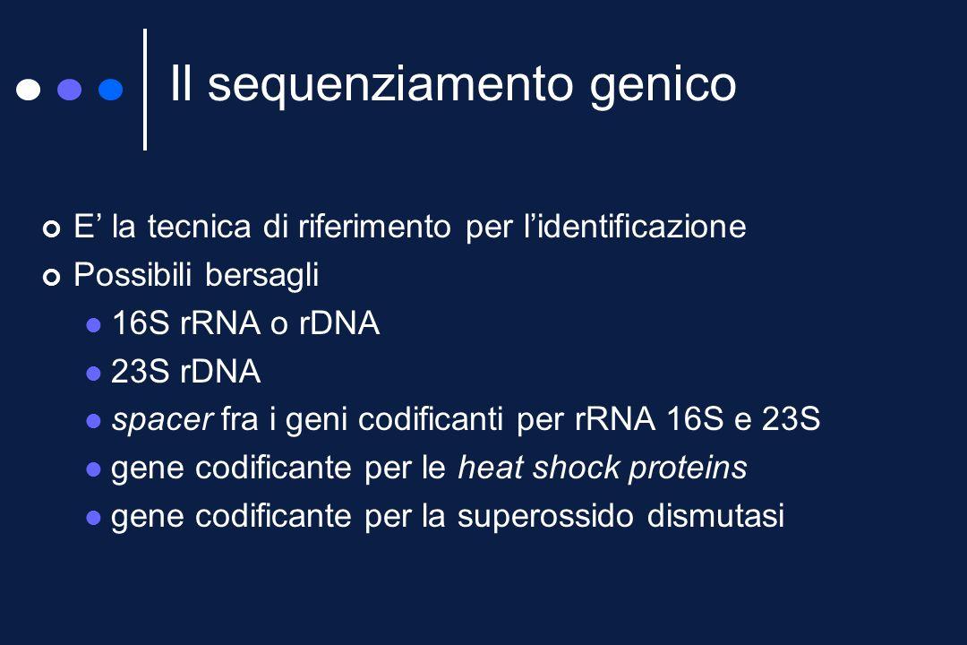 Le tecnologie basate sullimpiego di sonde sono attualmente in grado di sostituire i test fenotipici per lidentificazione dei micobatteri più comuni Per le specie più rare il test di riferimento è rappresentato dal sequenziamento DNA-probe, alternativa allidentificazione?