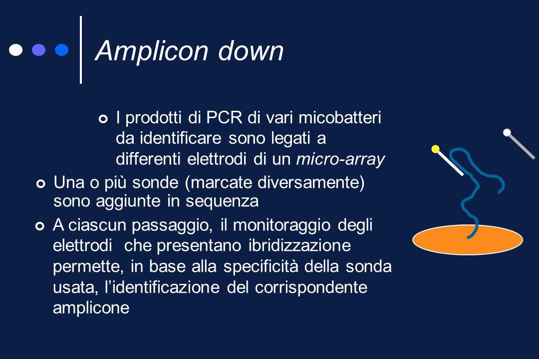 Tecnologia microarray-microchip Microarray: sistema multi-sonda miniaturizzato (controllato, o meno, elettronicamente) Identificazione in vari passaggi di numerosi ceppi (amplicon down) Identificazione di un solo ceppo con un solo passaggio (capture down)