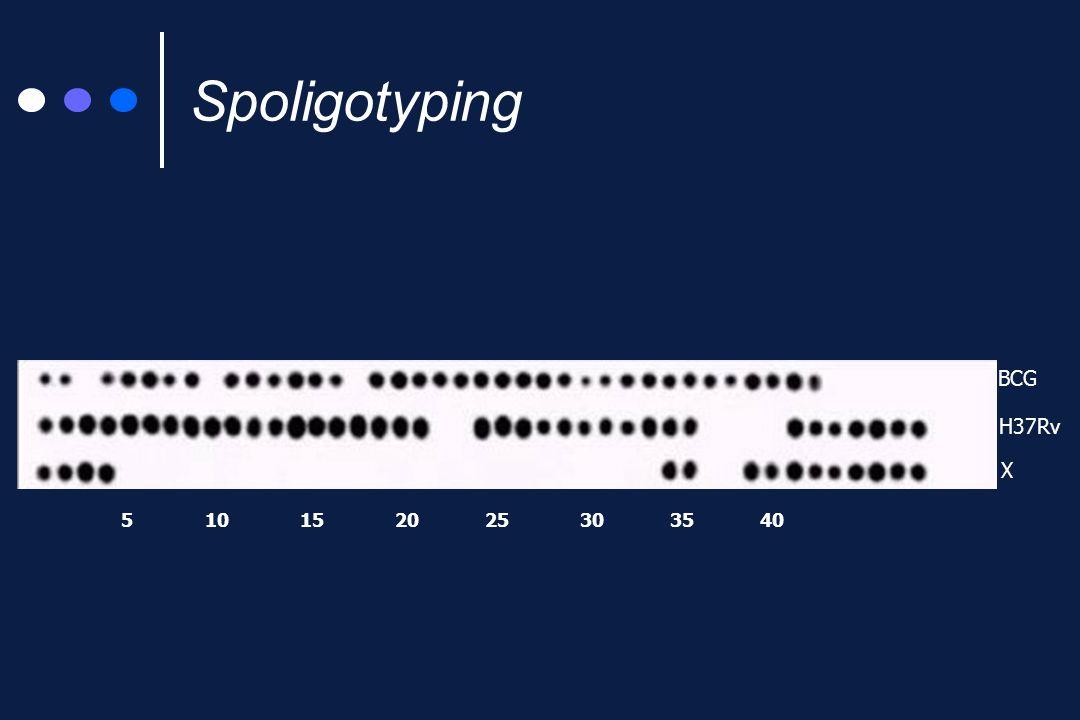 Da 9 a 50 sequenze ripetute di 36 bp (DR) inframmezzate da sequenze non ripetute di 35-41 bp (spaziatori) DR 1111 2222 4444 5555 6666 H37Rv 3333 1 5 10 15 20 25 30 35 40 1111 2222 4444 5555 6666 DR BCG spaziatore DR Il locus DR