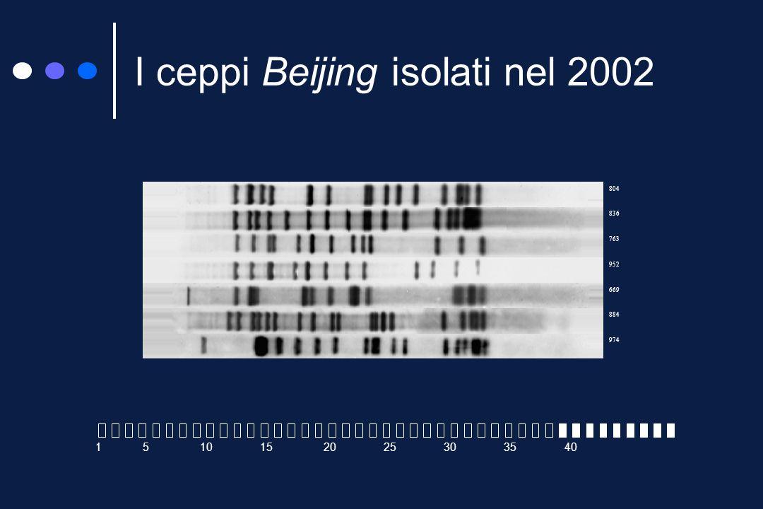 I ceppi Beijing I vari spolygotipi possono essere raggruppati (in base alle somiglianze) in famiglie I ceppi della famiglia Beijing hanno soltanto gli spaziatori 35-43 Presenti originariamente in Cina, vengono oggi isolati, con frequenza crescente, in quasi tutti i paesi del mondo Fra le caratteristiche principali: spiccata virulenza frequente sviluppo di resistenze multiple H37Rv Beijing 5 10 15 20 25 30 35 40