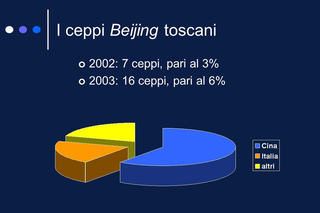 I ceppi Beijing isolati nel 2002 1 5 10 15 20 25 30 35 40 804 836 763 952 669 884 974