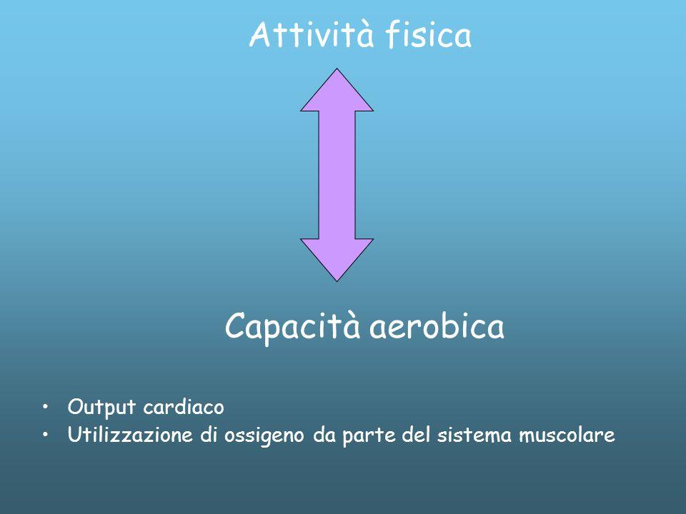 Attività fisica Capacità aerobica Output cardiaco Utilizzazione di ossigeno da parte del sistema muscolare