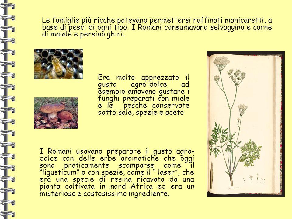 Le famiglie più ricche potevano permettersi raffinati manicaretti, a base di pesci di ogni tipo. I Romani consumavano selvaggina e carne di maiale e p
