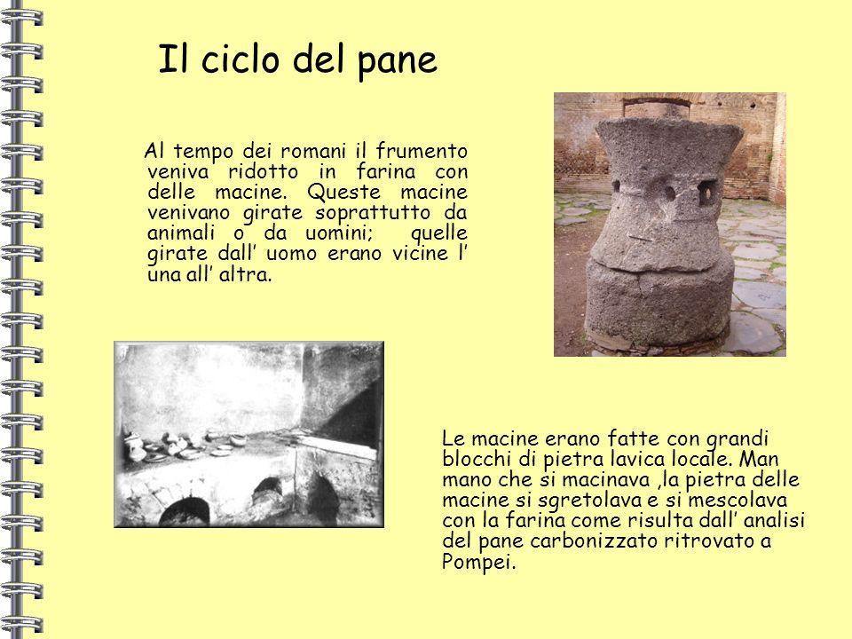 Al tempo dei romani il frumento veniva ridotto in farina con delle macine. Queste macine venivano girate soprattutto da animali o da uomini; quelle gi
