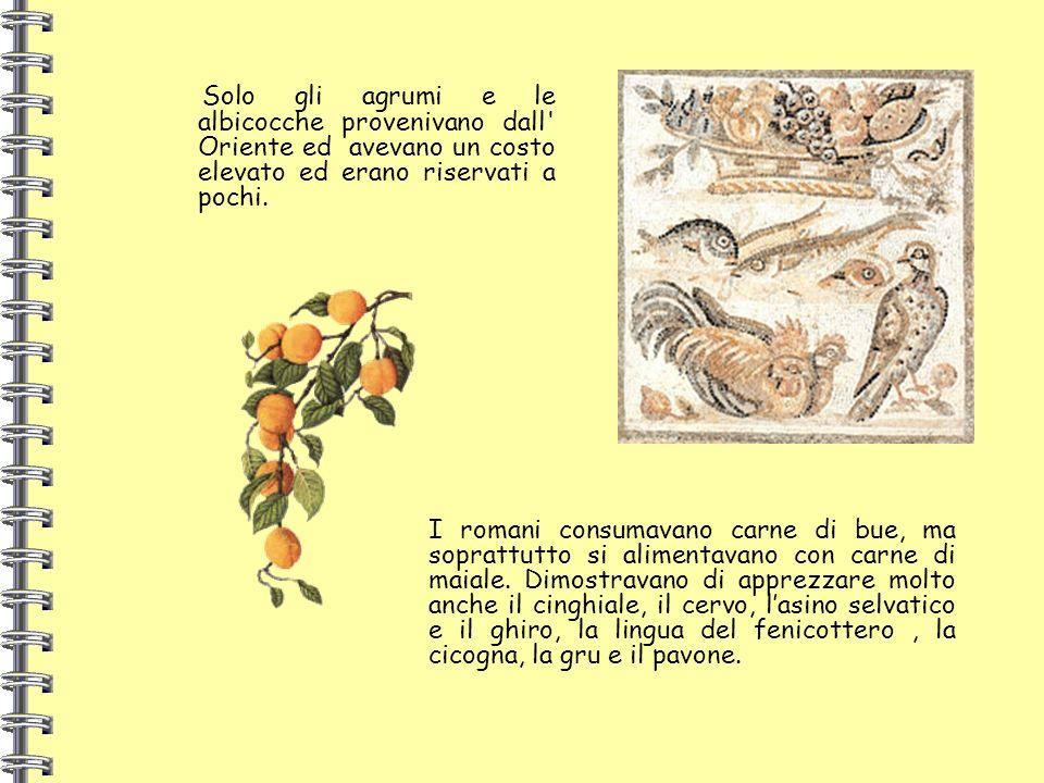 Solo gli agrumi e le albicocche provenivano dall' Oriente ed avevano un costo elevato ed erano riservati a pochi. I romani consumavano carne di bue, m