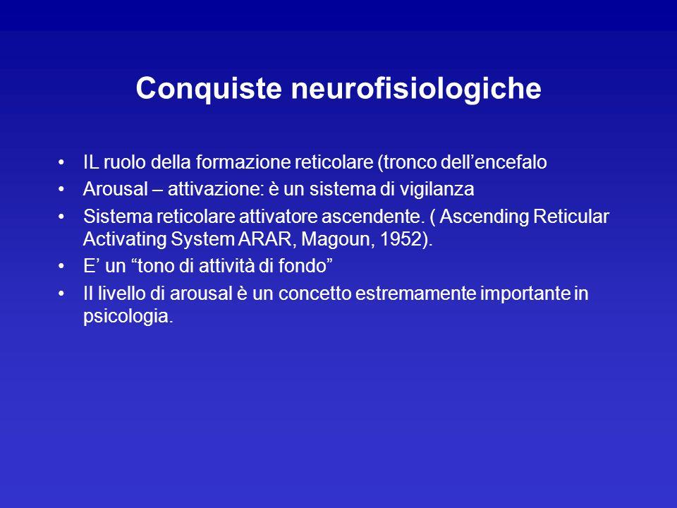 Conquiste neurofisiologiche IL ruolo della formazione reticolare (tronco dellencefalo Arousal – attivazione: è un sistema di vigilanza Sistema reticol