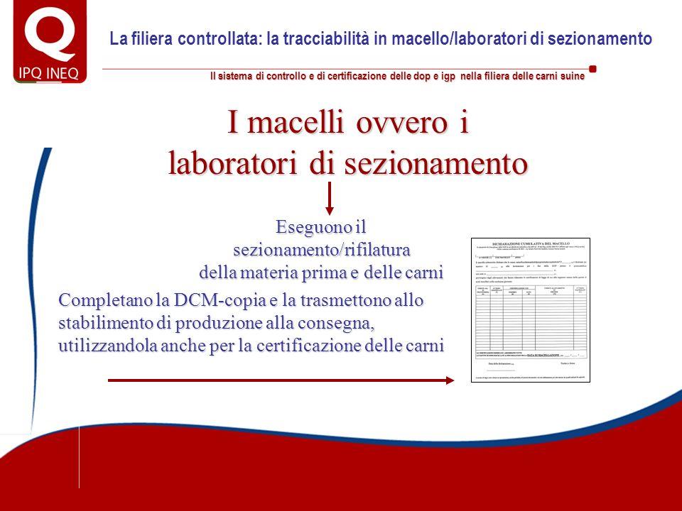 Il sistema di controllo e di certificazione delle dop e igp nella filiera delle carni suine La filiera controllata: la tracciabilità in macello/labora