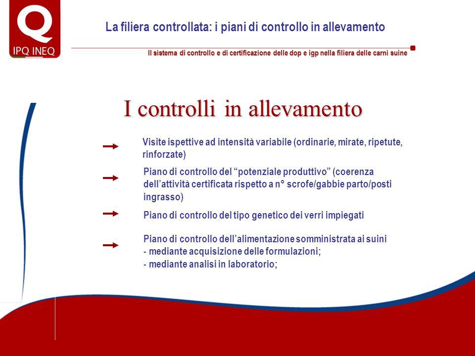 Il sistema di controllo e di certificazione delle dop e igp nella filiera delle carni suine La filiera controllata: i piani di controllo in allevament