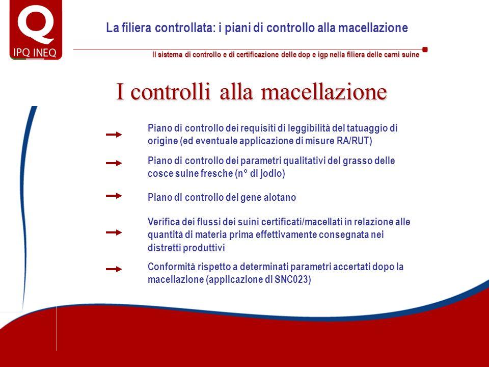 Il sistema di controllo e di certificazione delle dop e igp nella filiera delle carni suine La filiera controllata: i piani di controllo alla macellaz