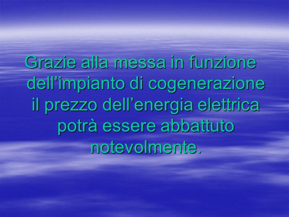 Grazie alla messa in funzione dellimpianto di cogenerazione il prezzo dellenergia elettrica potrà essere abbattuto notevolmente.