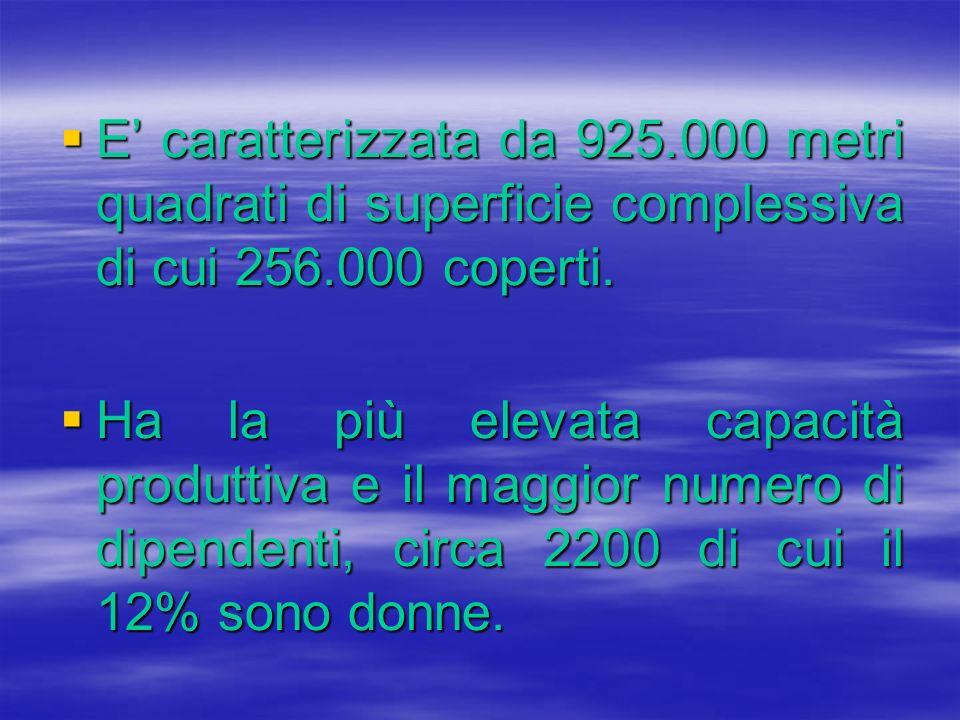 E caratterizzata da 925.000 metri quadrati di superficie complessiva di cui 256.000 coperti. E caratterizzata da 925.000 metri quadrati di superficie