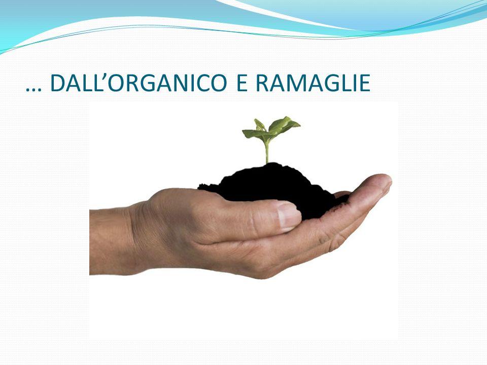 … DALLORGANICO E RAMAGLIE