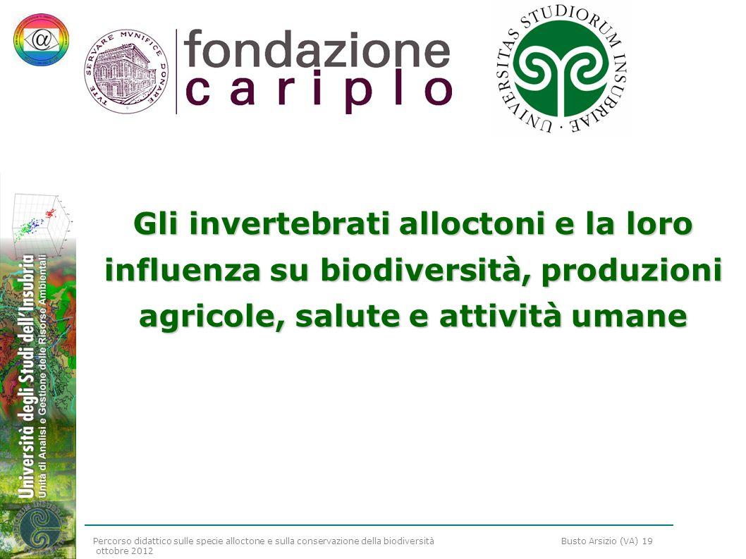 Percorso didattico sulle specie alloctone e sulla conservazione della biodiversità Busto Arsizio (VA) 19 ottobre 2012 Gli invertebrati alloctoni e la