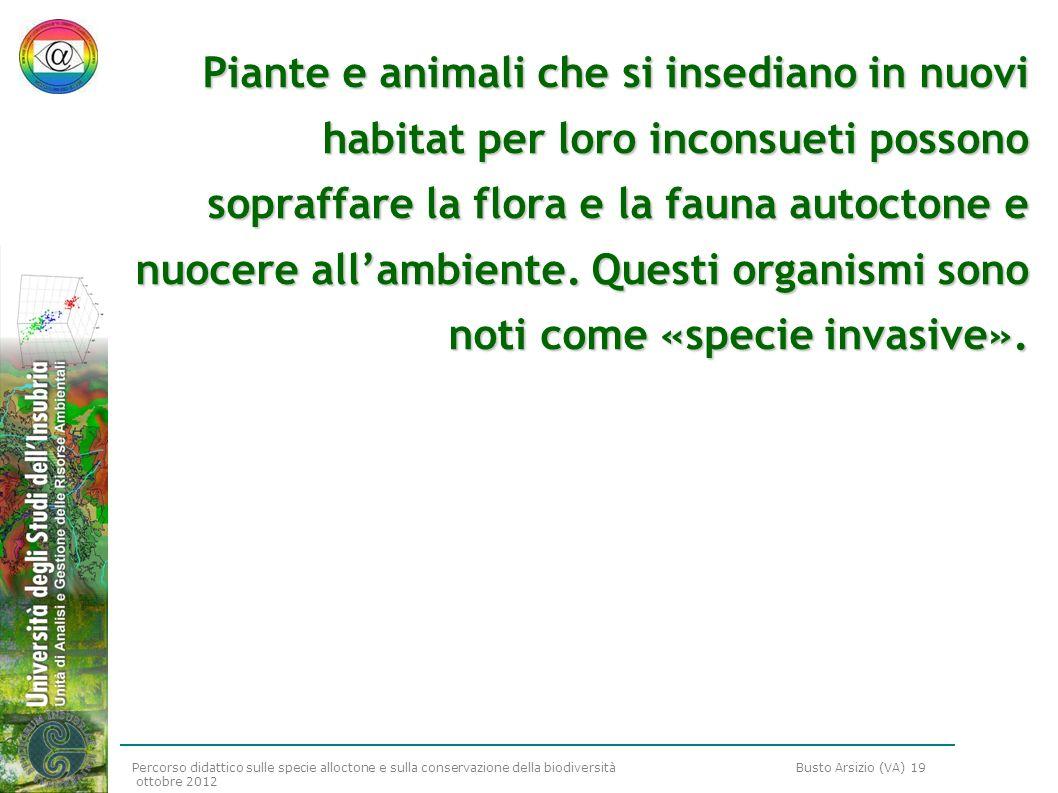 Percorso didattico sulle specie alloctone e sulla conservazione della biodiversità Busto Arsizio (VA) 19 ottobre 2012 Piante e animali che si insedian