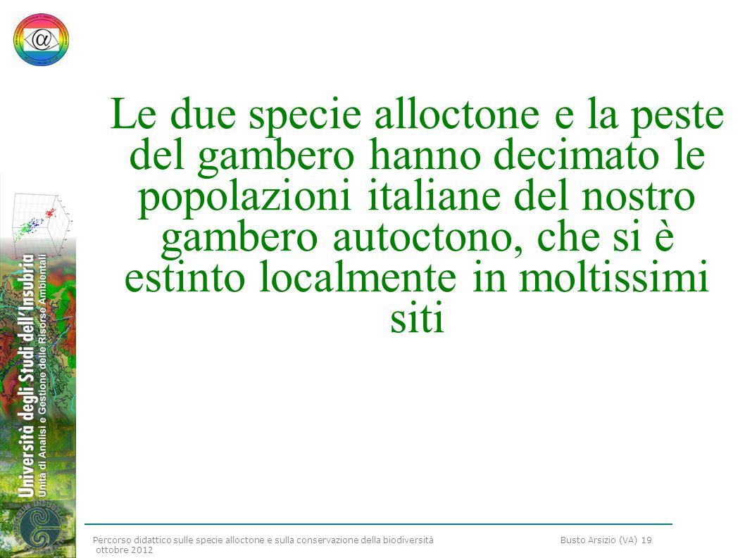 Percorso didattico sulle specie alloctone e sulla conservazione della biodiversità Busto Arsizio (VA) 19 ottobre 2012 Le due specie alloctone e la pes