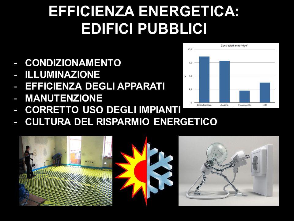 EFFICIENZA ENERGETICA: EDIFICI PUBBLICI -CONDIZIONAMENTO -ILLUMINAZIONE -EFFICIENZA DEGLI APPARATI -MANUTENZIONE -CORRETTO USO DEGLI IMPIANTI -CULTURA