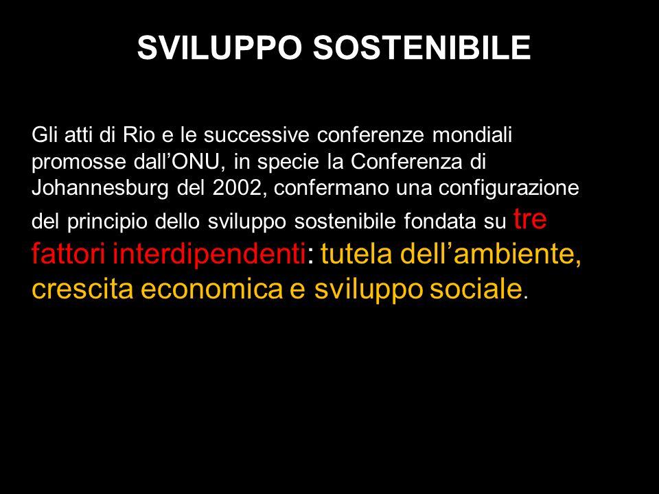 SVILUPPO SOSTENIBILE Gli atti di Rio e le successive conferenze mondiali promosse dallONU, in specie la Conferenza di Johannesburg del 2002, conferman