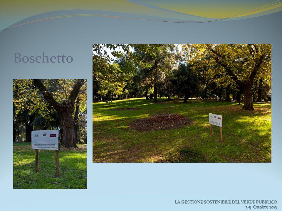 Boschetto LA GESTIONE SOSTENIBILE DEL VERDE PUBBLICO 3-5 Ottobre 2013 3-5 Ottobre 2013